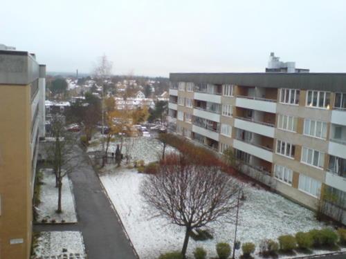 Erster Schnee 2007