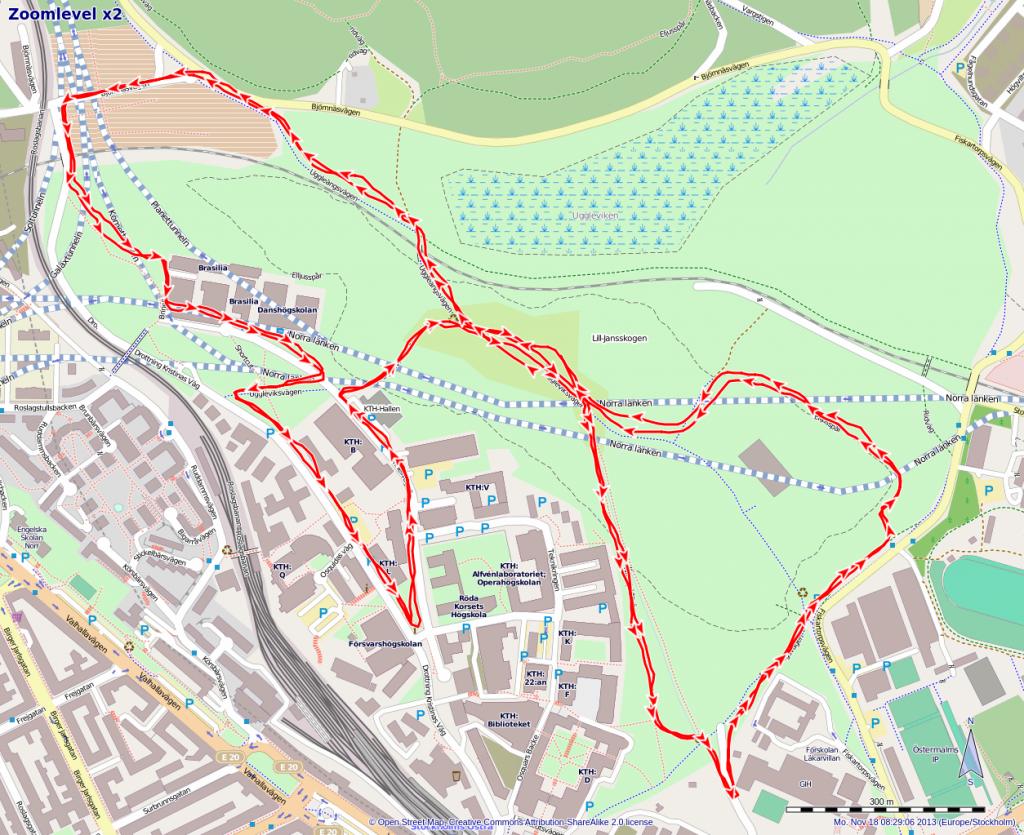 Die Strecke der Tömilen laut meiner Läufer-App.
